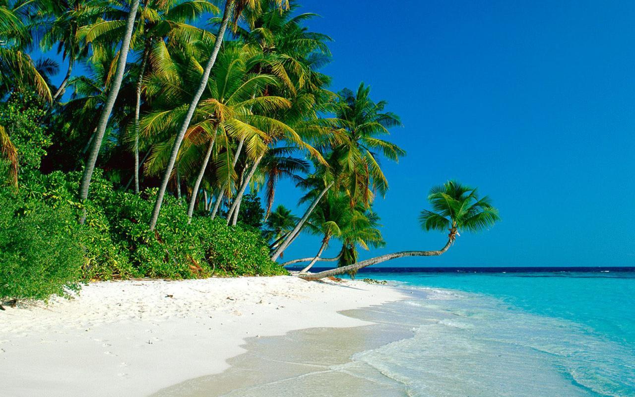 Остров Самуи. Тайланд Koh Samui: отзывы, фото, советы туристам